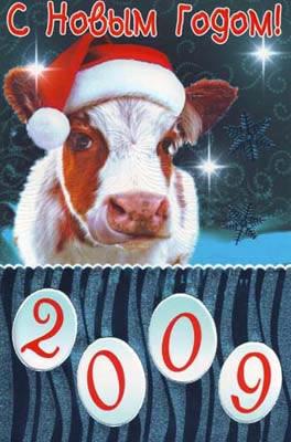 Поздравление наступает год быка
